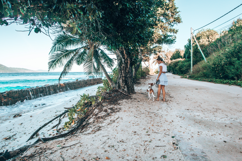 18 Jahre Seychellen – eure 18 Fragen an mich   WOLKENWEIT